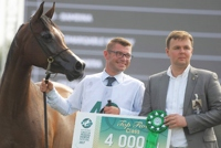 AHCII chairman, Łukasz Łuniewski - Lucas Luniewski as a Golden Sponsor of the European Arabian Horse Festival handed over prizes to the winners in few classes. Since 2014, through all editions AHCII Institute has bee the Golden Sponsor and a strategic partner of the Festival.